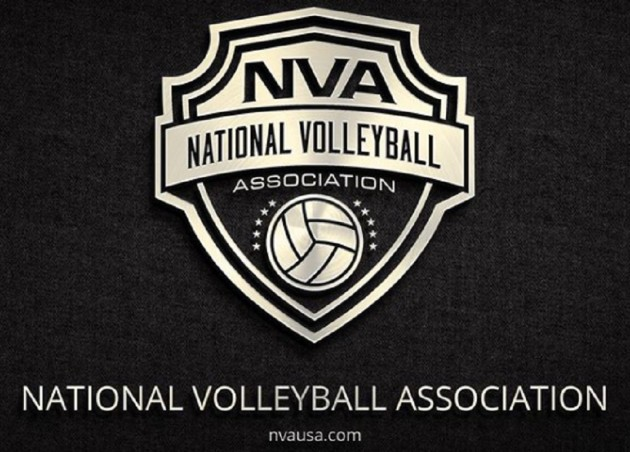FINALLY – Professional men's volleyball league in USA will be launched soon!